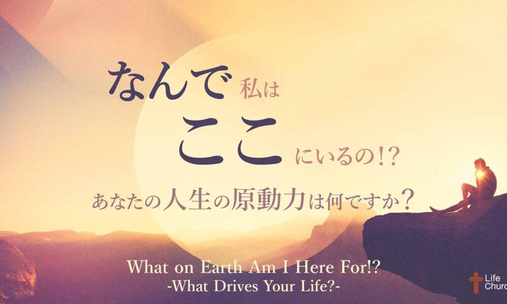 なんで私はここにいるの!? パート3 by ケイラー幸恵 What on Earth Am I Here For!? Part 3