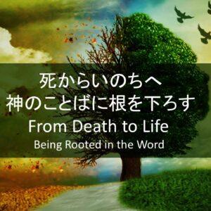 死からいのちへ―神のことばに根を下ろす From Death to Life-Being Rooted in the Word by Pastor Kelly Kaylor